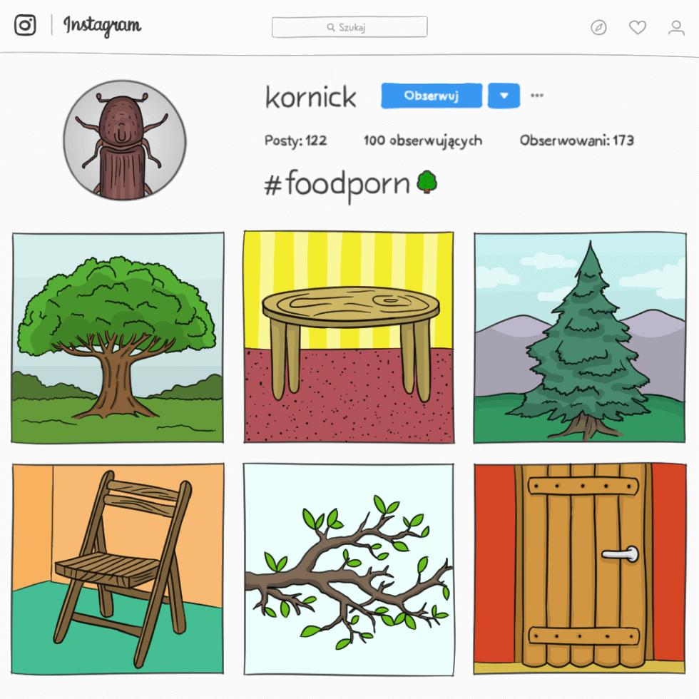 Konto kornicka na Instagramie, który publikuje zdjęcia drzew i mebli z hashtagiem #foodporn